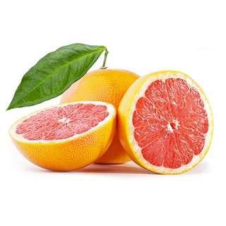 Global Seasons Star Ruby Grapefruits (XL Size)