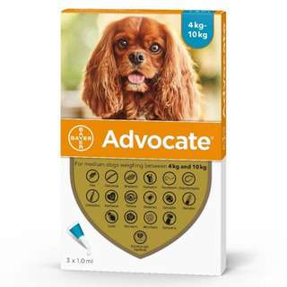 Advocate Spot-on Solution for Medium Dogs (4-10kg)