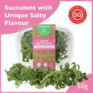 Just Produce Just Ice Plant