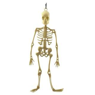 Partyforte Halloween 34Cm Skeleton Full Body Decoration