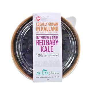 Artisan Green Red Baby Kale SG-Pesticide Free