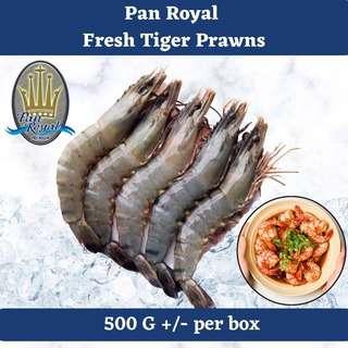 Pan Royal Fresh Tiger Prawn