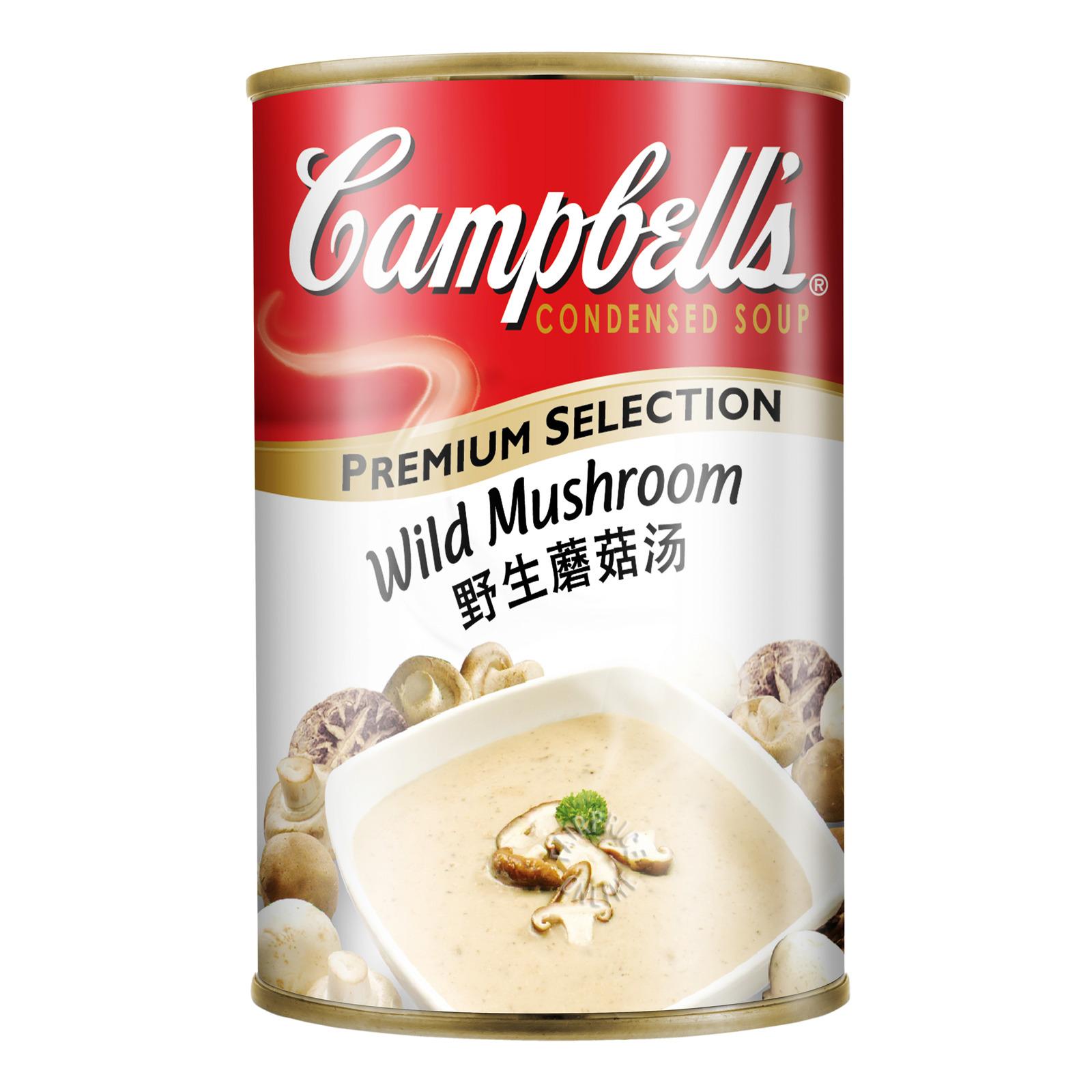 Campbell's Premium Selection Soup - Wild Mushroom