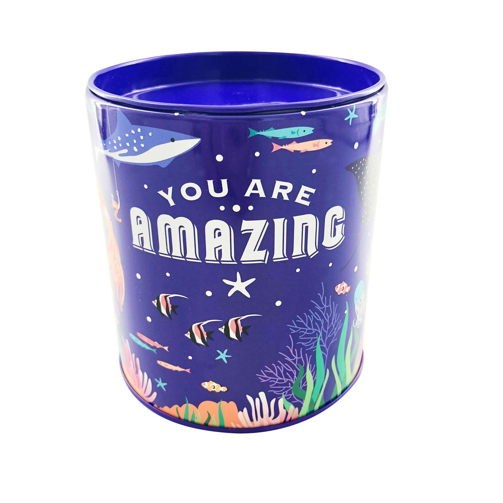The Paper Stone Savings Coin Tins - You Are Amazing Marine