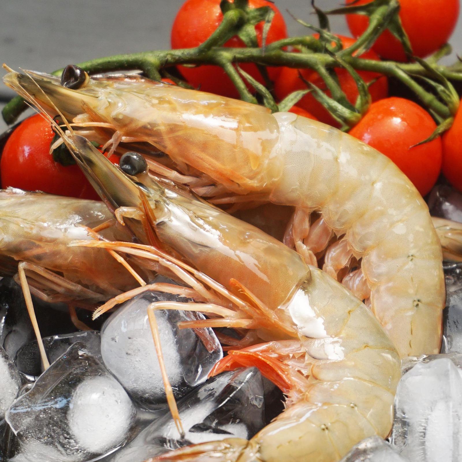 Catch Seafood Jumbo Angka Prawn