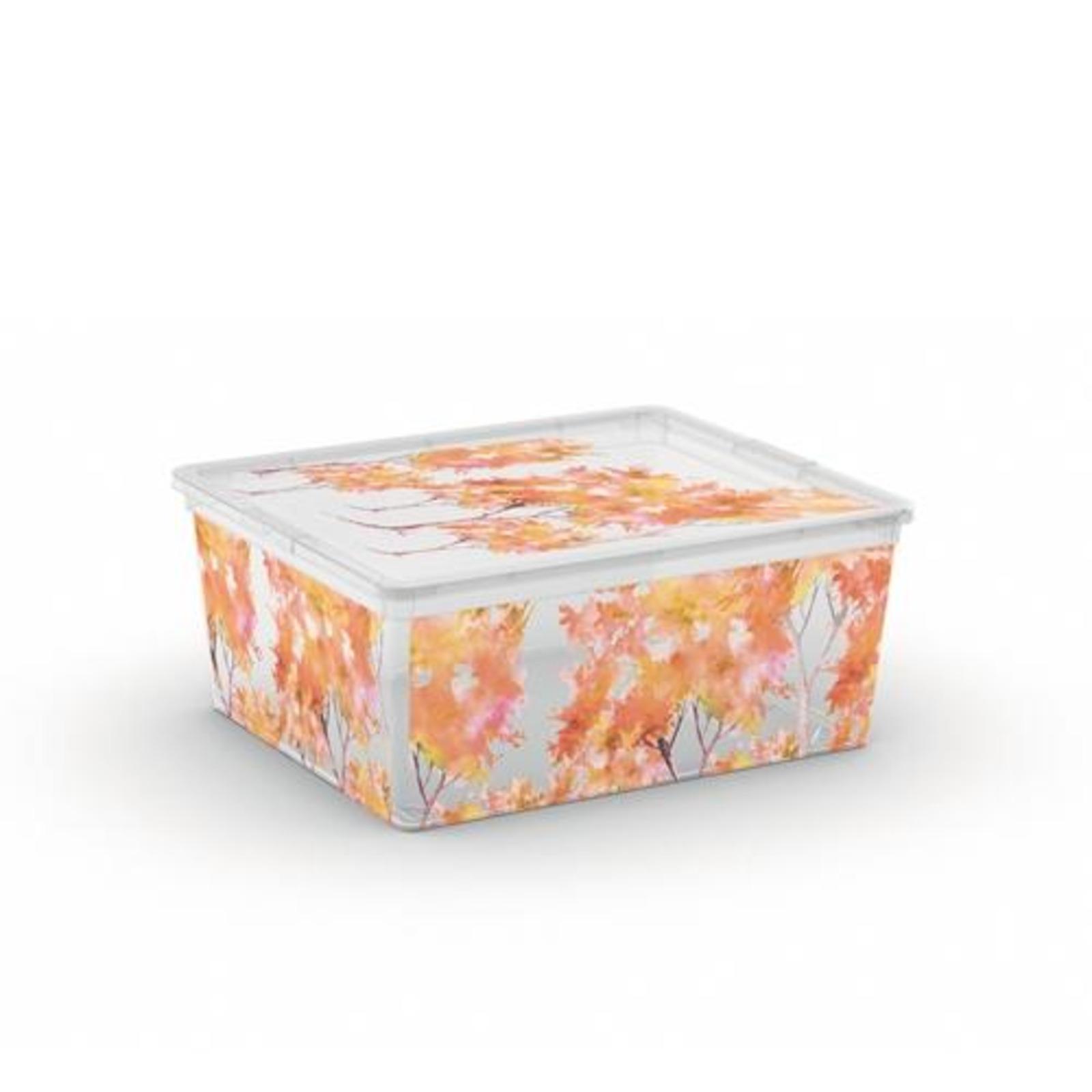KIS C Box Style Nature + Lid M