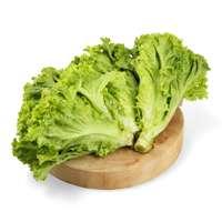 Cabbages & Lettuces